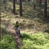 dt4you-mtb-2018-img_9361