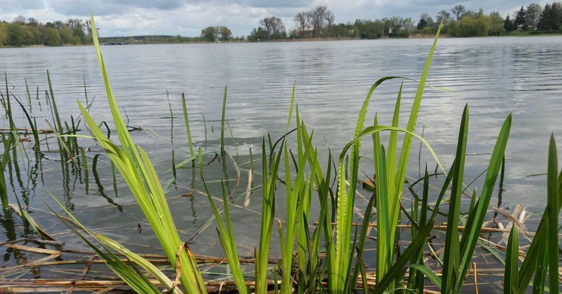 Burza nad Jeziorem Rogozińskim