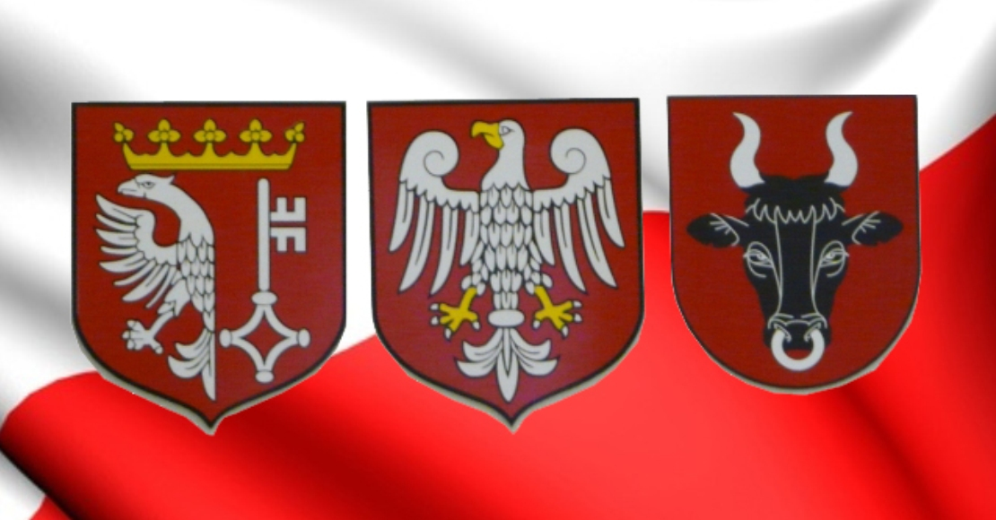 Wybory do Rady Powiatu w statystykach cz.1
