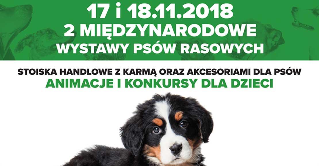 2 Międzynarodowe Wystawy Psów Rasowych - KONKURS!