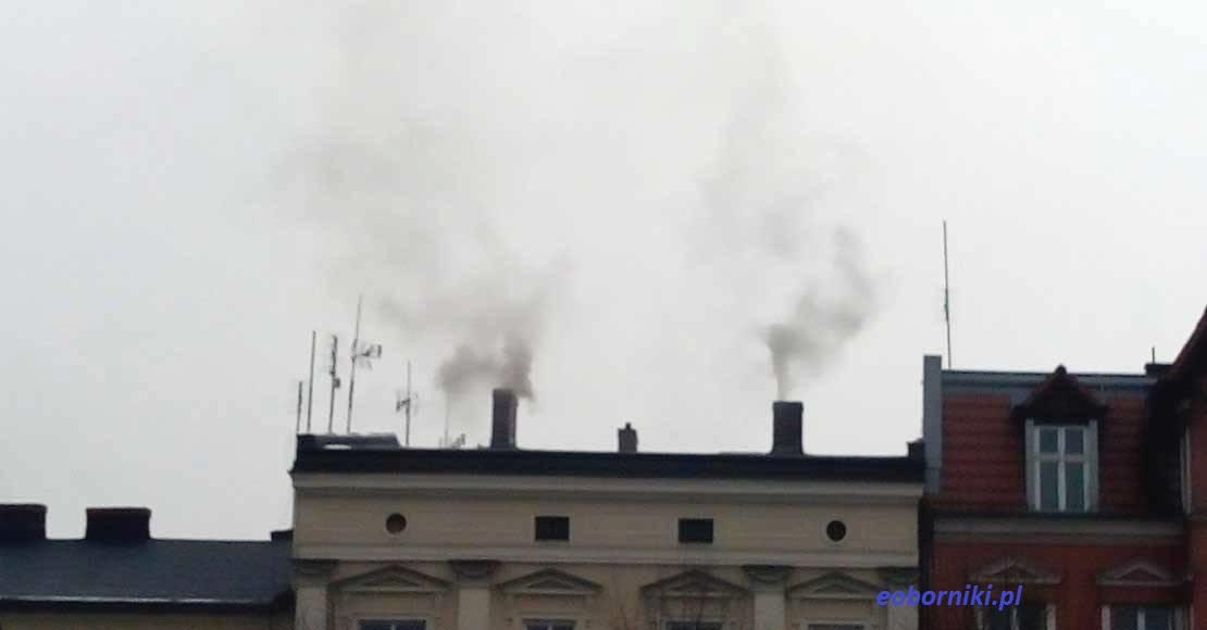 Czyste powietrze - warunki programu