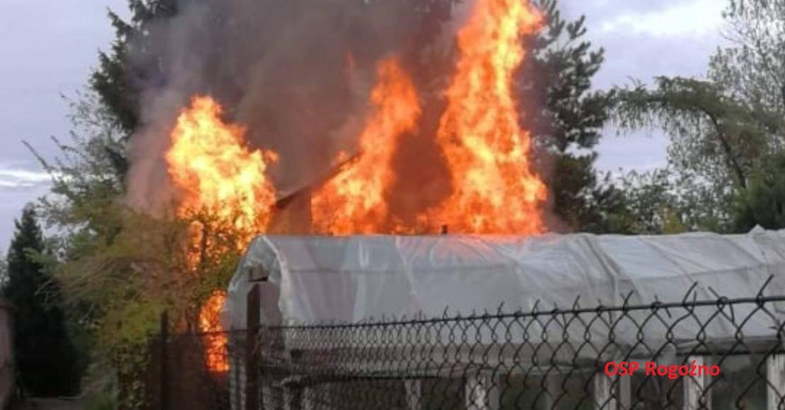 Jedna osobowa poszkodowana w pożarze (foto)