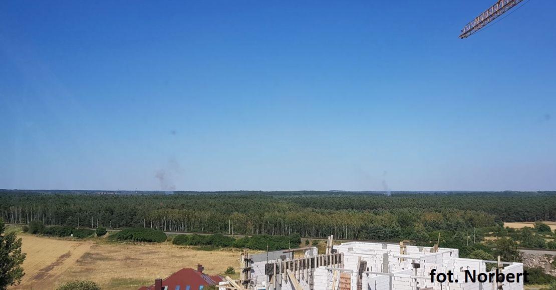 Pali się las w Gołaszynie i Kowanowie