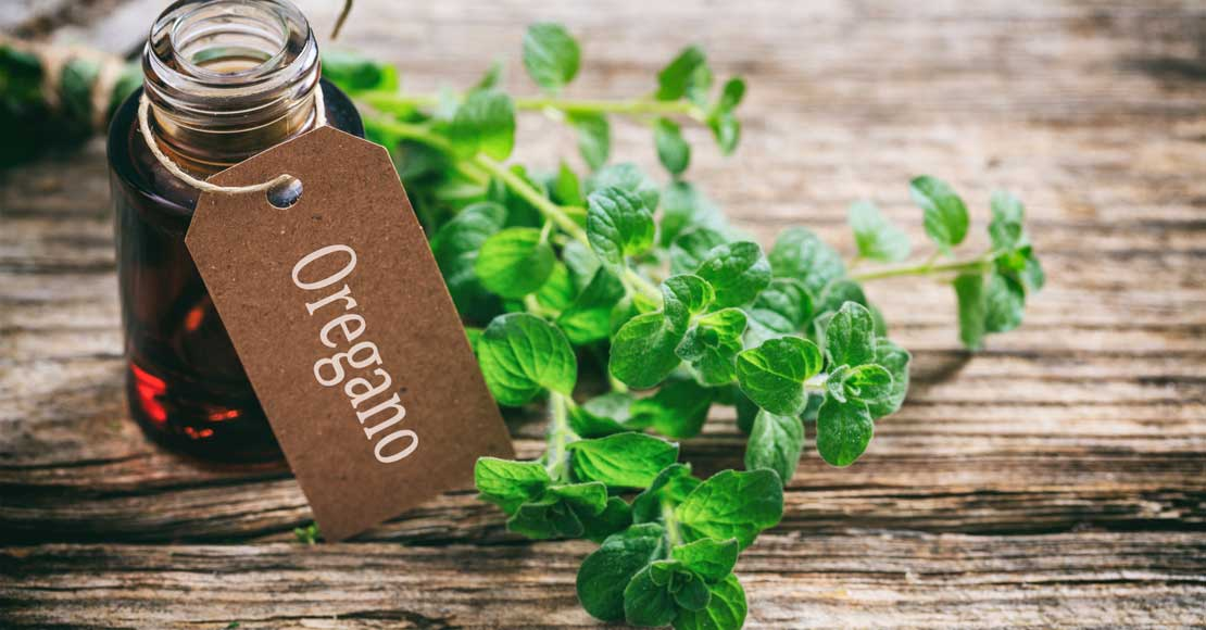 8 zastosowań olejku z oregano