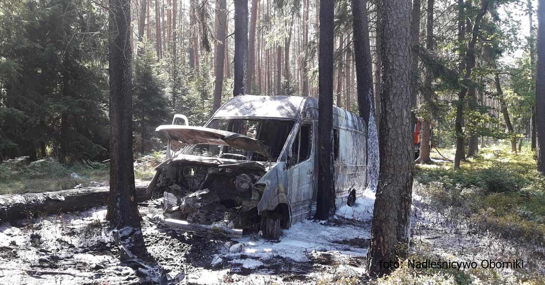 Auto spłonęło w środku lasu
