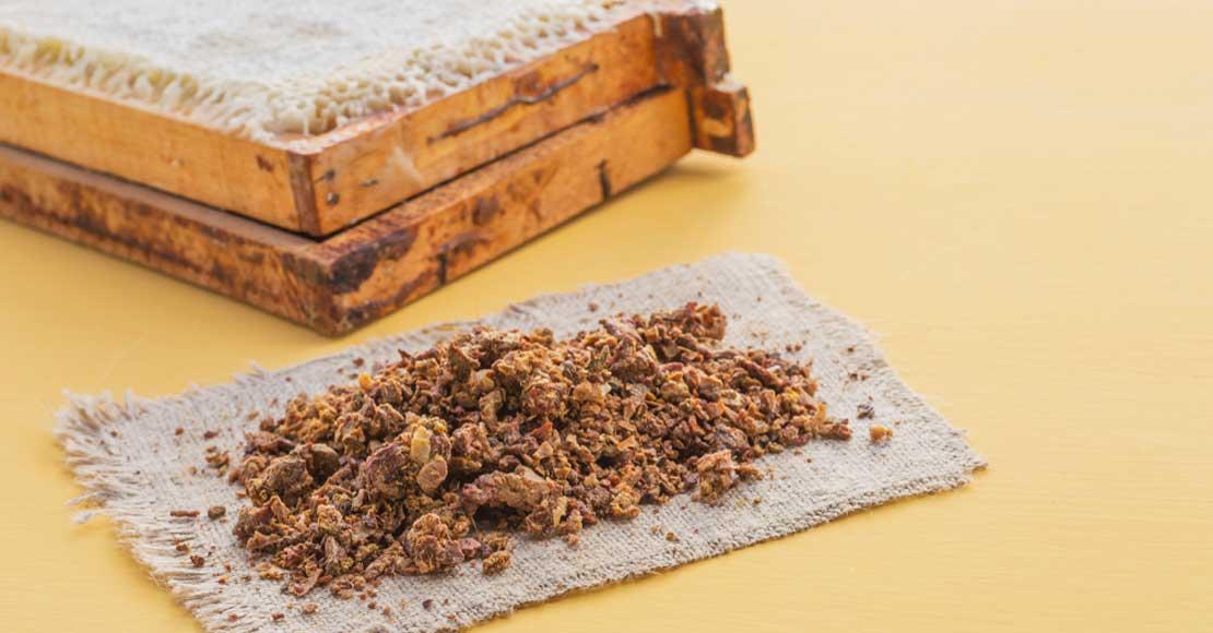 Jakie właściwości ma propolis i dlaczego warto go stosować? Sprawdź!