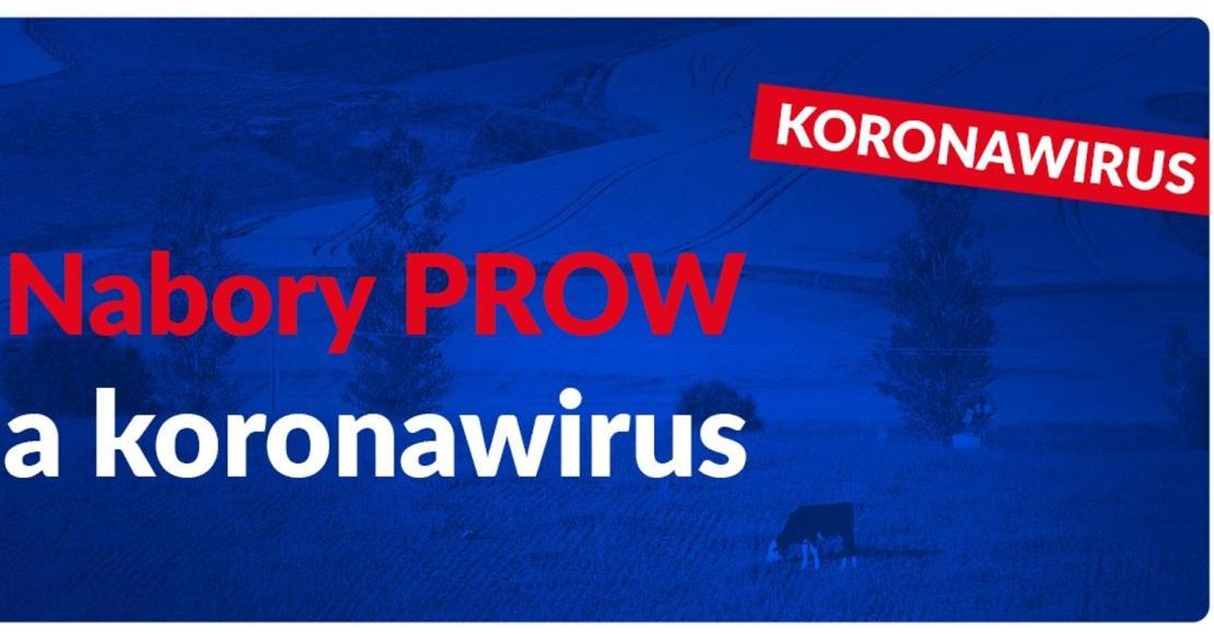 Nabory PROW, a koronawirus