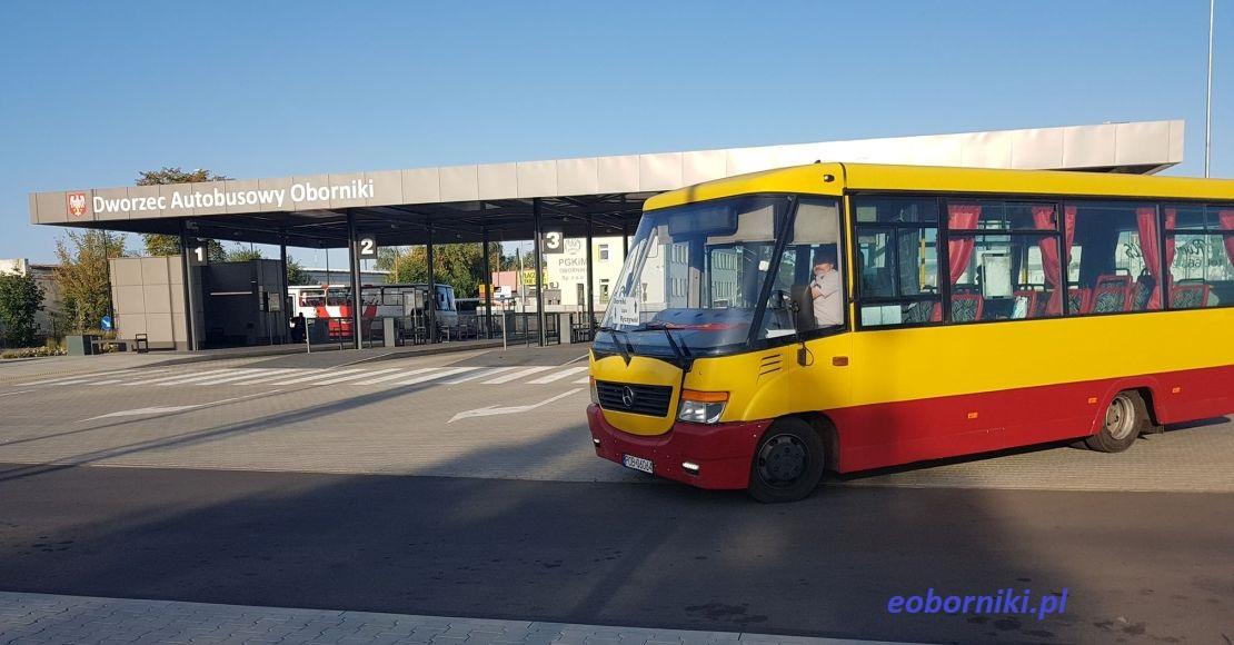 Na trasę Ryczywół-Oborniki wraca Romek-Bus