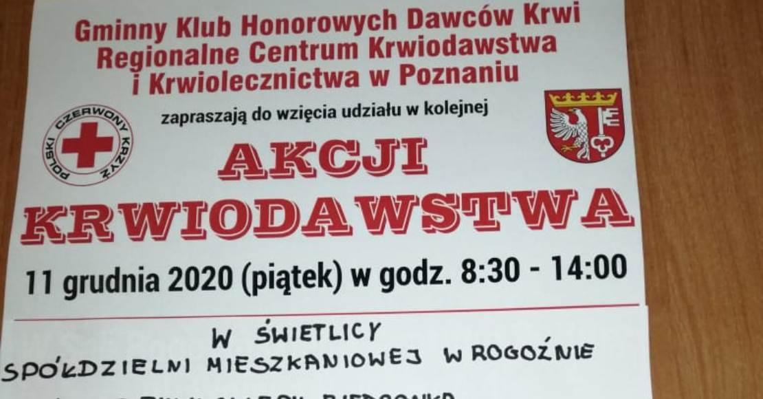 Oddaj w piątek krew w Rogoźnie