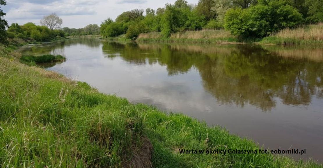 Nie można pływać po rzece Warcie