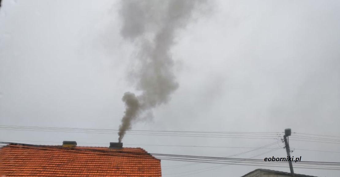 Wykorzystanie potencjału odnawialnych źródeł energii w walce ze smogiem na obszarach wiejskich