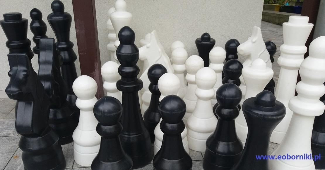 Zapraszamy na Pierwszy Obornicki Turniej Szachowy online