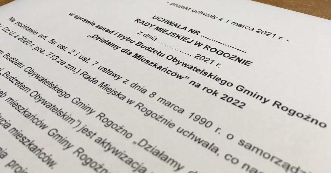 Budżet obywatelski w Rogoźnie?
