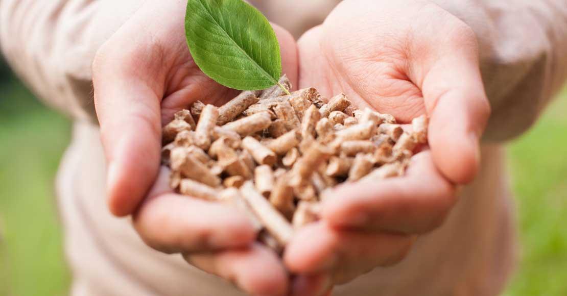 Czy pellet jest ekologiczny?